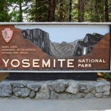 Nationalpark - YOSEMITE